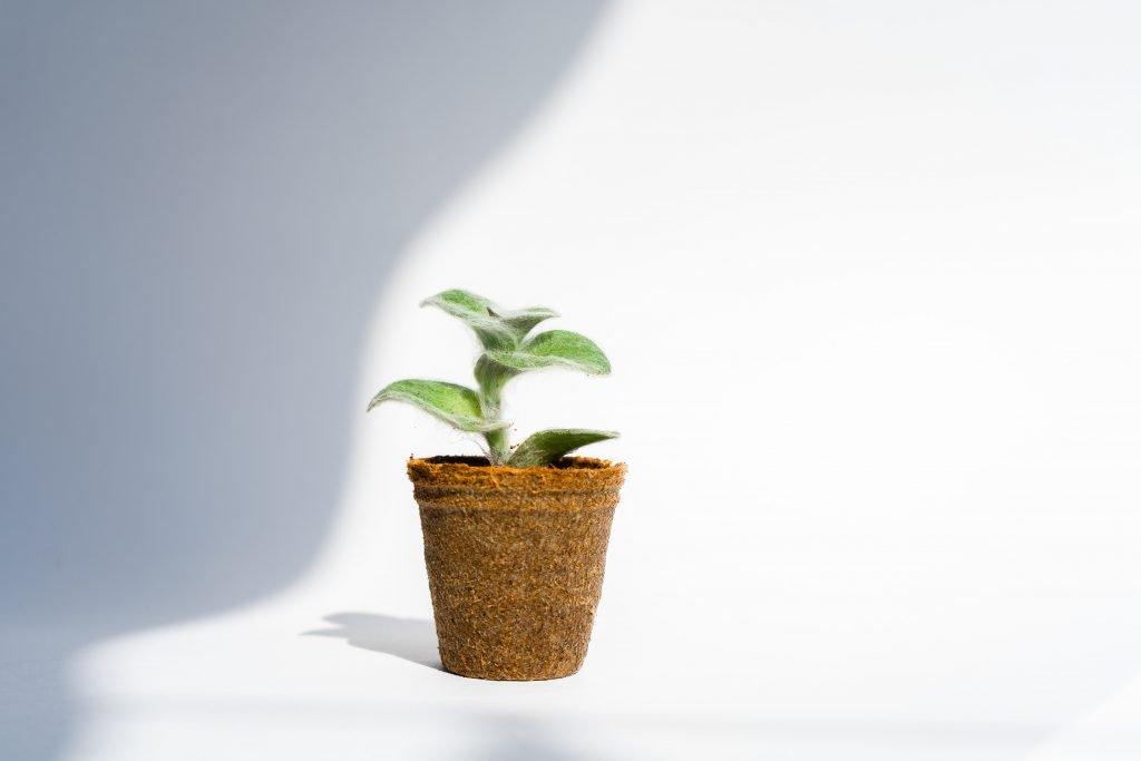 sustainable fulfilment